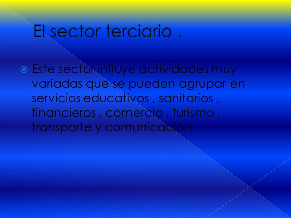  Este sector influye actividades muy variadas que se pueden agrupar en servicios educativos, sanitarios, financieros, comercio, turismo, transporte y comunicación.