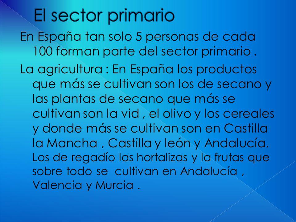 En España tan solo 5 personas de cada 100 forman parte del sector primario.