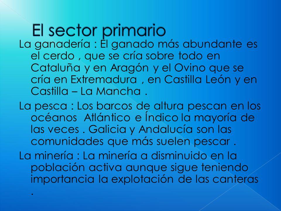 La ganadería : El ganado más abundante es el cerdo, que se cría sobre todo en Cataluña y en Aragón y el Ovino que se cría en Extremadura, en Castilla León y en Castilla – La Mancha.