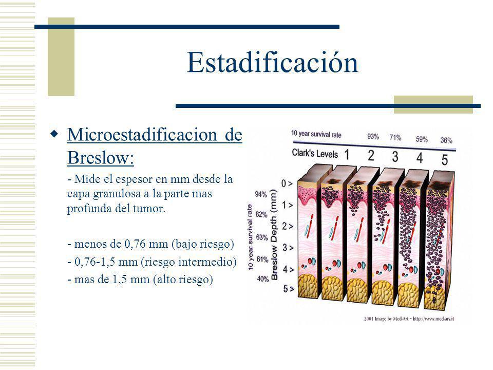 Estadificación  Microestadificacion de Breslow: - Mide el espesor en mm desde la capa granulosa a la parte mas profunda del tumor.