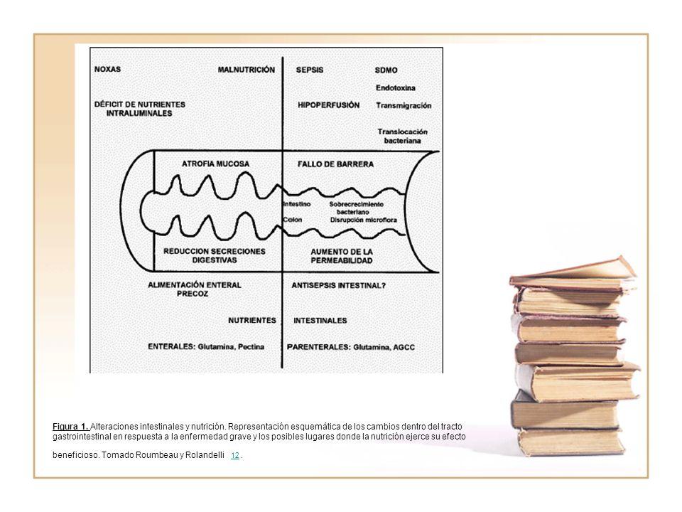 Figura 1. Alteraciones intestinales y nutrición. Representación esquemática de los cambios dentro del tracto gastrointestinal en respuesta a la enferm