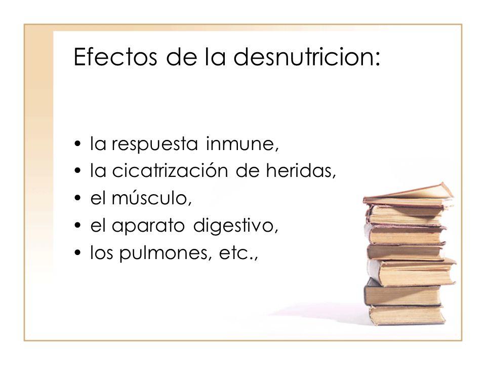 Efectos de la desnutricion: •la respuesta inmune, •la cicatrización de heridas, •el músculo, •el aparato digestivo, •los pulmones, etc.,