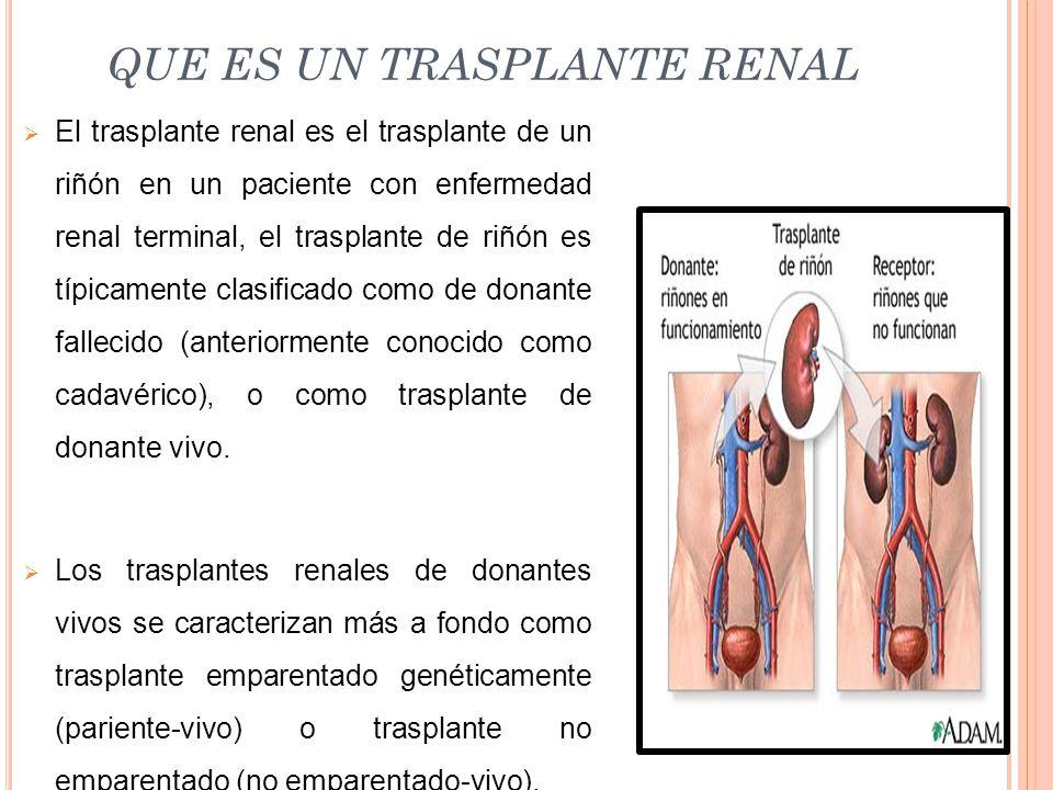 QUE ES UN TRASPLANTE RENAL  El trasplante renal es el trasplante de un riñón en un paciente con enfermedad renal terminal, el trasplante de riñón es