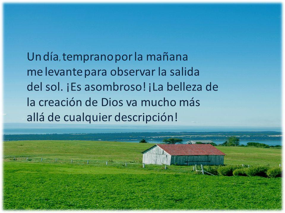 mientras observaba el paisaje, alababa a Dios por su bella obra, Y allí sentado, sentí la presencia del Señor.