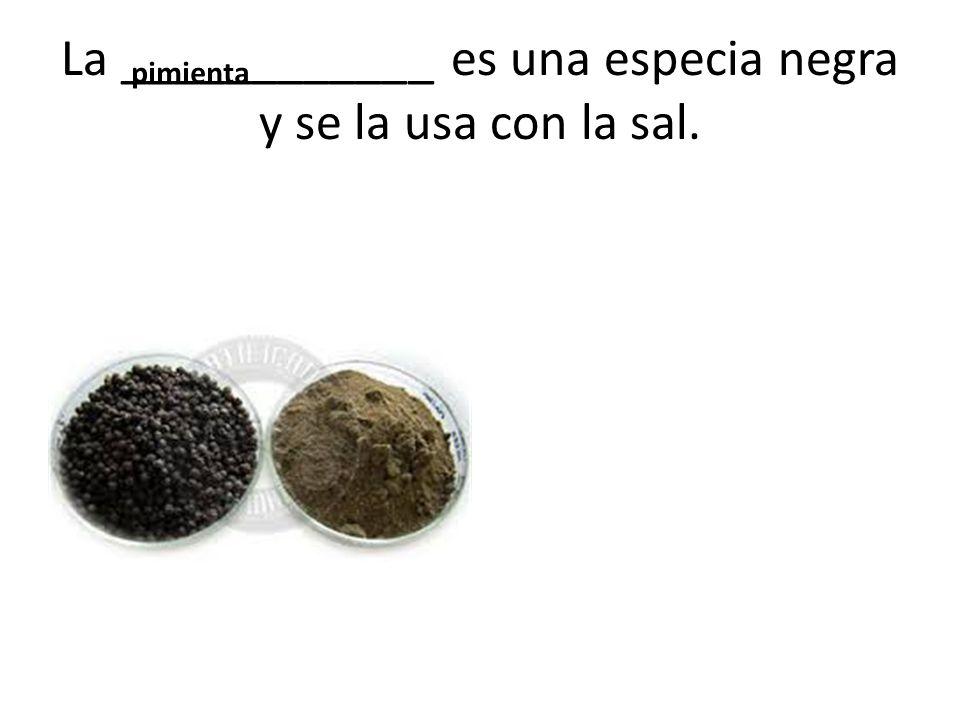 La ____________ es una especia negra y se la usa con la sal. pimienta