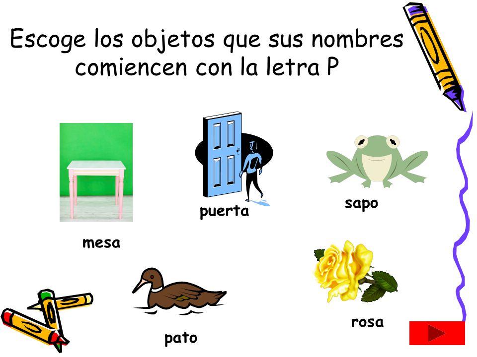 Consonante P p Consonante P p Maestra Kindergarten San Lorenzo, Puerto Rico pa pe pi po pu