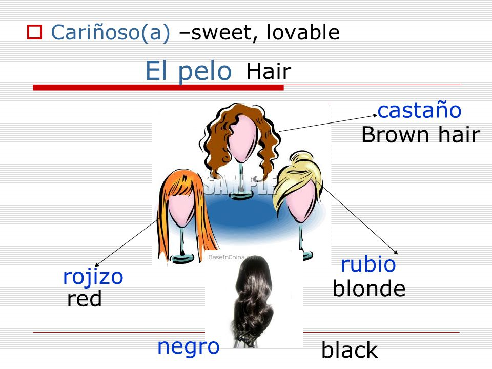  Cariñoso(a) –sweet, lovable El pelo Hair castaño Brown hair rubio blonde rojizo red negro black