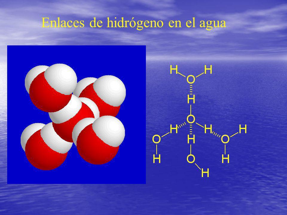 Agua 1s 2s 2p 2p 2p 1s sp 3 sp 3 sp 3 sp 3 Estructura electrónica del oxígeno