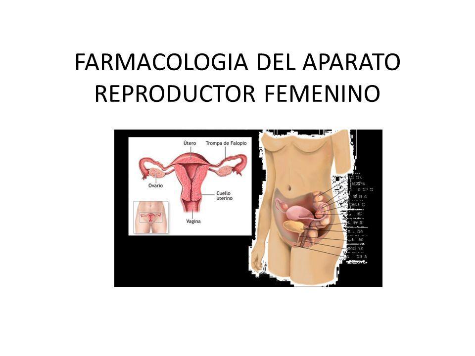 FARMACOLOGIA DEL APARATO REPRODUCTOR FEMENINO. ESTROGENOS Son ...