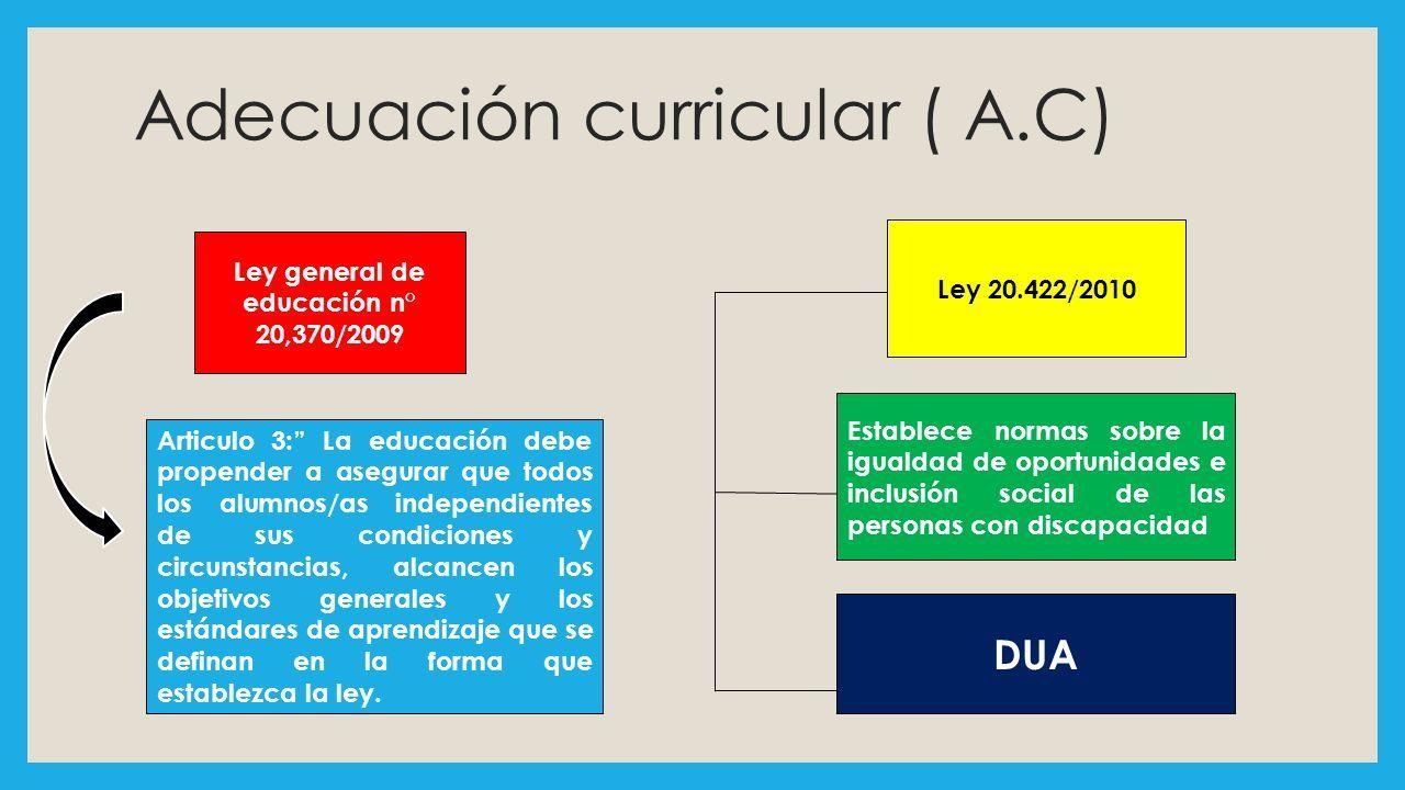 Excepcional Objetivo Independiente De Currículum De Escritura ...