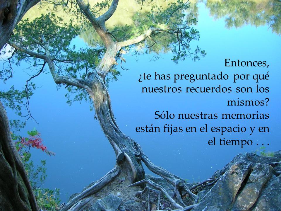 Hoy no somos iguales que ayer ni somos lo que seremos mañana. Nuestras células cambian, hasta nuestros pensamientos son otros a cada instante. Todo ca