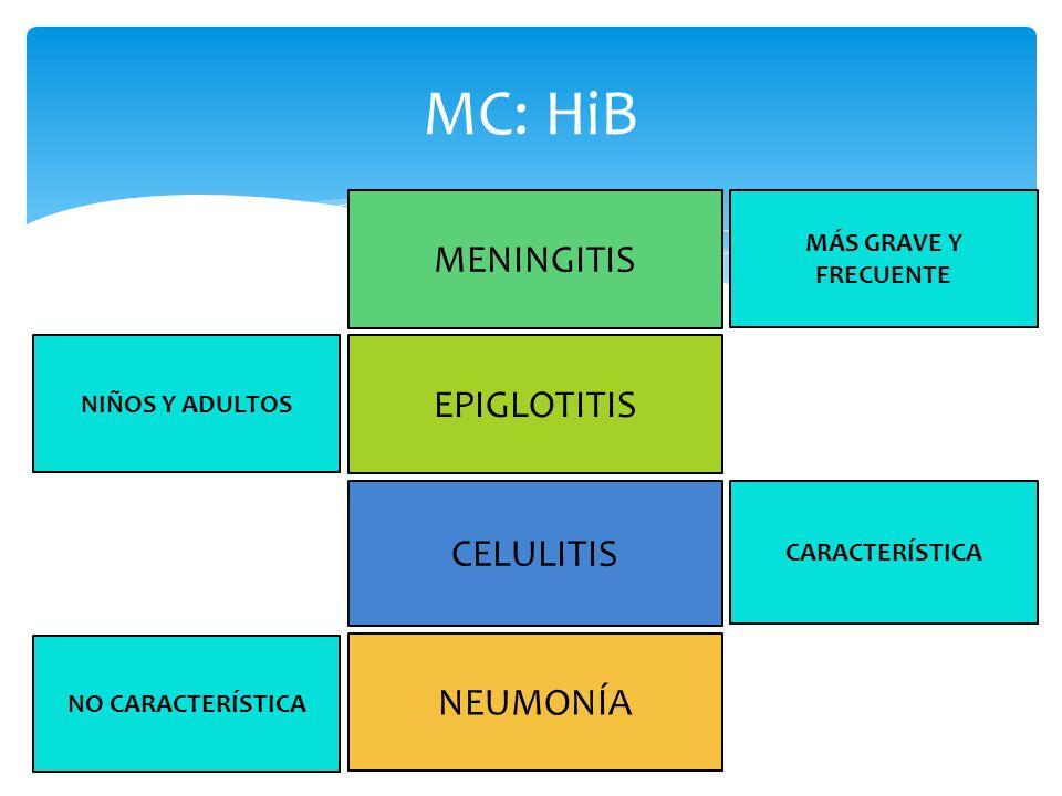 MC: HiB 1 año2 años3 años4 años5 años>6 años Meningitis Epiglotitis Neumonía Celulitis Bacteremia y sus complicaciones