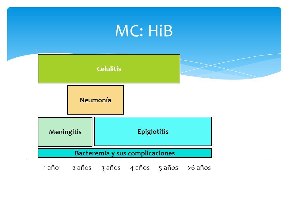 Patogenia e inmunidad Aspiración Inhalación directa La adherencia de las bacterias es mediada por vellosidades Tipo IV, proteínas de choque térmico y la proteína principal de la m.