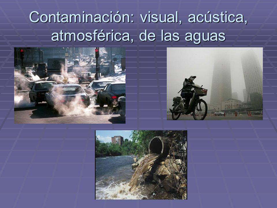 Los problemas de las ciudades  Problemas ambientales: contaminación acústica, congestión del tráfico, polución del aire, contaminación de las aguas,