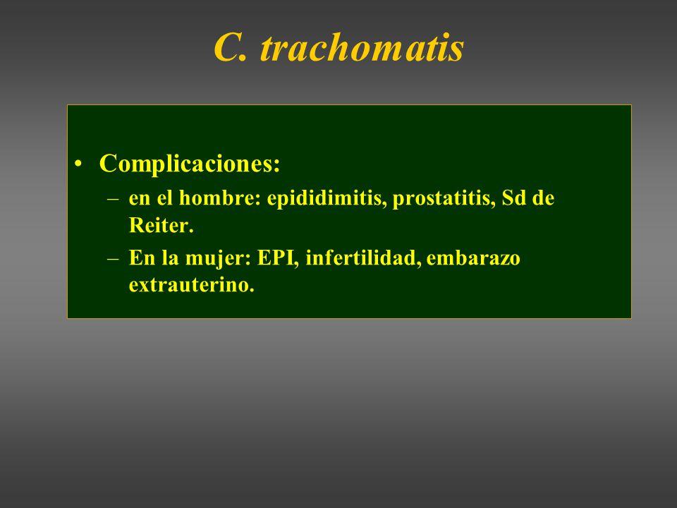 C.trachomatis Complicaciones: –en el hombre: epididimitis, prostatitis, Sd de Reiter.