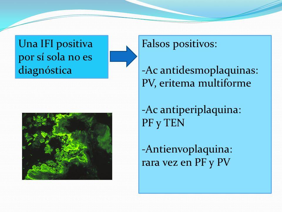 Una IFI positiva por sí sola no es diagnóstica Falsos positivos: -Ac antidesmoplaquinas: PV, eritema multiforme -Ac antiperiplaquina: PF y TEN -Antienvoplaquina: rara vez en PF y PV