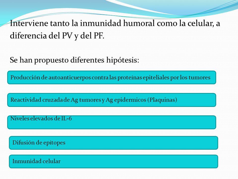 Interviene tanto la inmunidad humoral como la celular, a diferencia del PV y del PF.