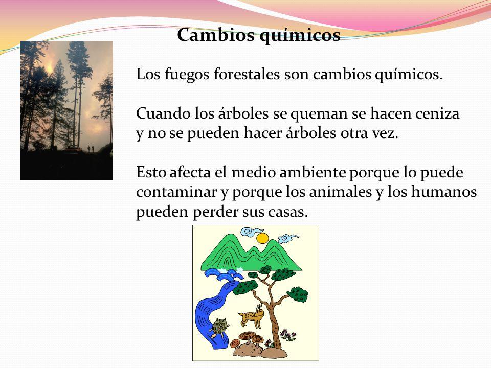 Resultado de imagen para cambios quimicos en el ambiente