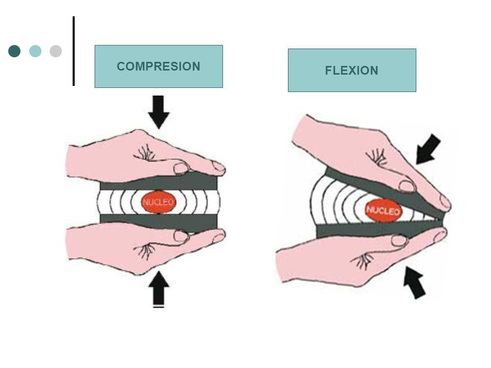 FLEXION COMPRESION