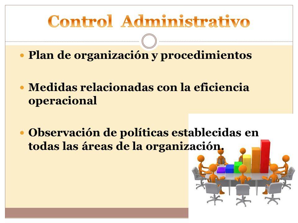 Plan de organización y procedimientos Medidas relacionadas con la eficiencia operacional Observación de políticas establecidas en todas las áreas de la organización.