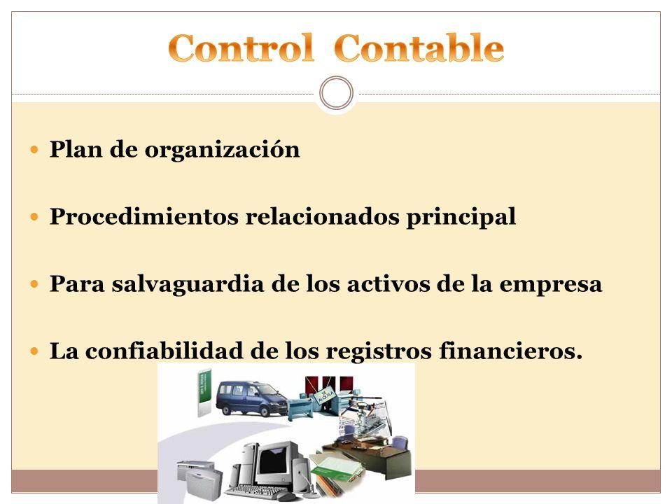 Plan de organización Procedimientos relacionados principal Para salvaguardia de los activos de la empresa La confiabilidad de los registros financieros.