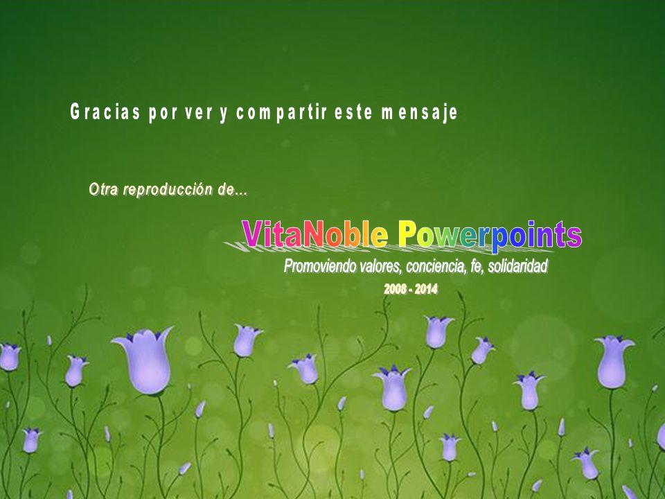 www.vitanoblepowerpoints.net