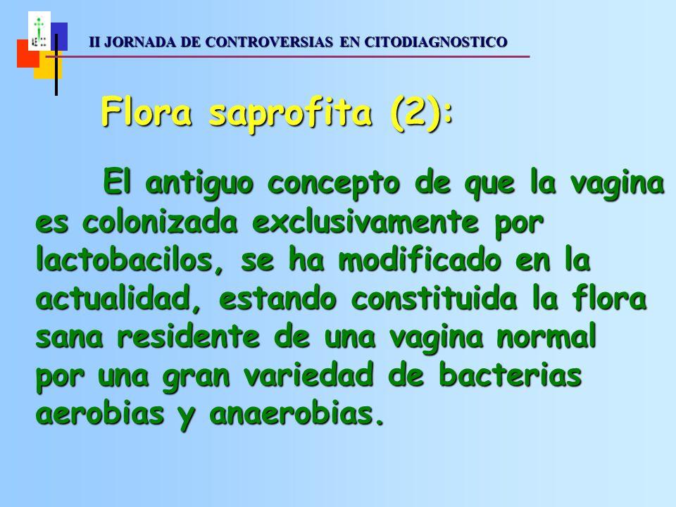 II JORNADA DE CONTROVERSIAS EN CITODIAGNOSTICO II JORNADA DE CONTROVERSIAS EN CITODIAGNOSTICO Aerobios grampositivosAerobios grampositivos Lactobacillus (Döderlein)50-75% Corynebacterium30% Estreptococos no hemolíticos25-35% Enterococos20-30% Estafilococo epidermidis40-55% Estafilococo aureus0-5% Aerobios gramnegativosAerobios gramnegativos Escherichia colli10-30% Gardnerella vaginalis25% AnaerobiosAnaerobios Clostridium5-20% Peptoestreptococos25-35% Bacteroides20-40% Fusobacterium5-25% Flora vaginal normal