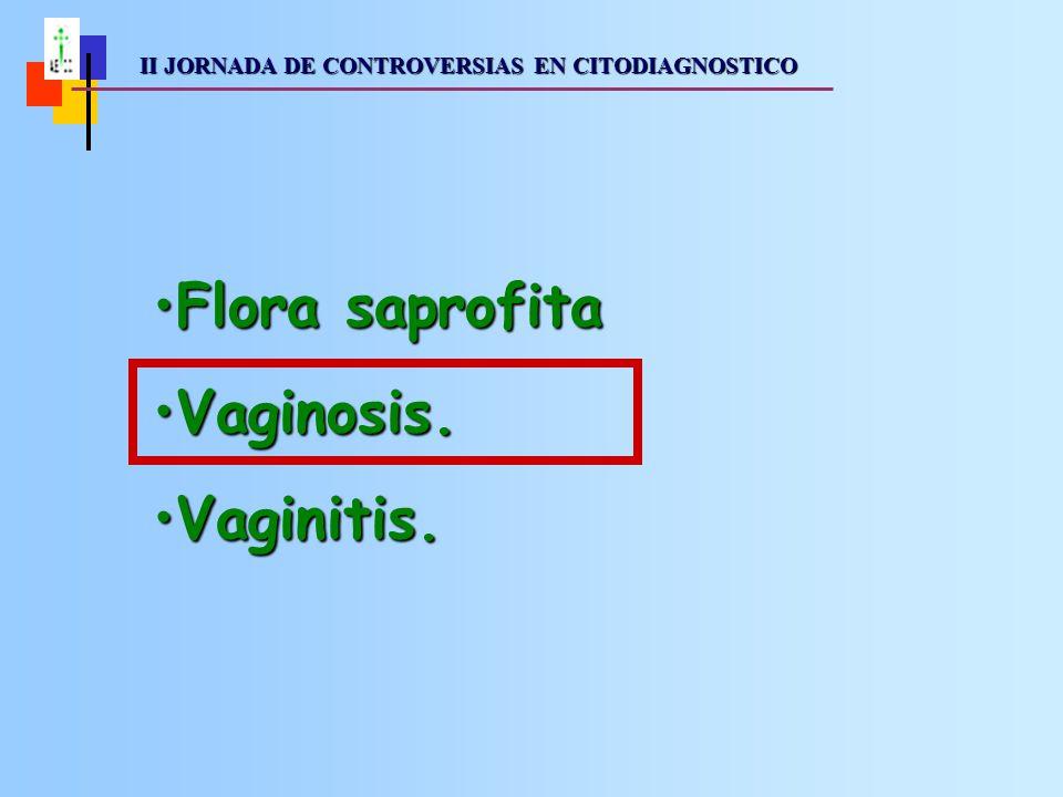 II JORNADA DE CONTROVERSIAS EN CITODIAGNOSTICO II JORNADA DE CONTROVERSIAS EN CITODIAGNOSTICOVaginosis: Alteraciones en el ecosistema microbiano vaginal que en un principio no muestran síntomas, pero cuya presencia puede alterar su equilibrio y secundariamente dar lugar a inflamación.