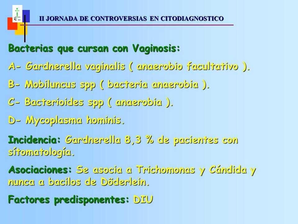 II JORNADA DE CONTROVERSIAS EN CITODIAGNOSTICO II JORNADA DE CONTROVERSIAS EN CITODIAGNOSTICO Bacterias que cursan con Vaginosis: A- Gardnerella vaginalis ( anaerobio facultativo ).