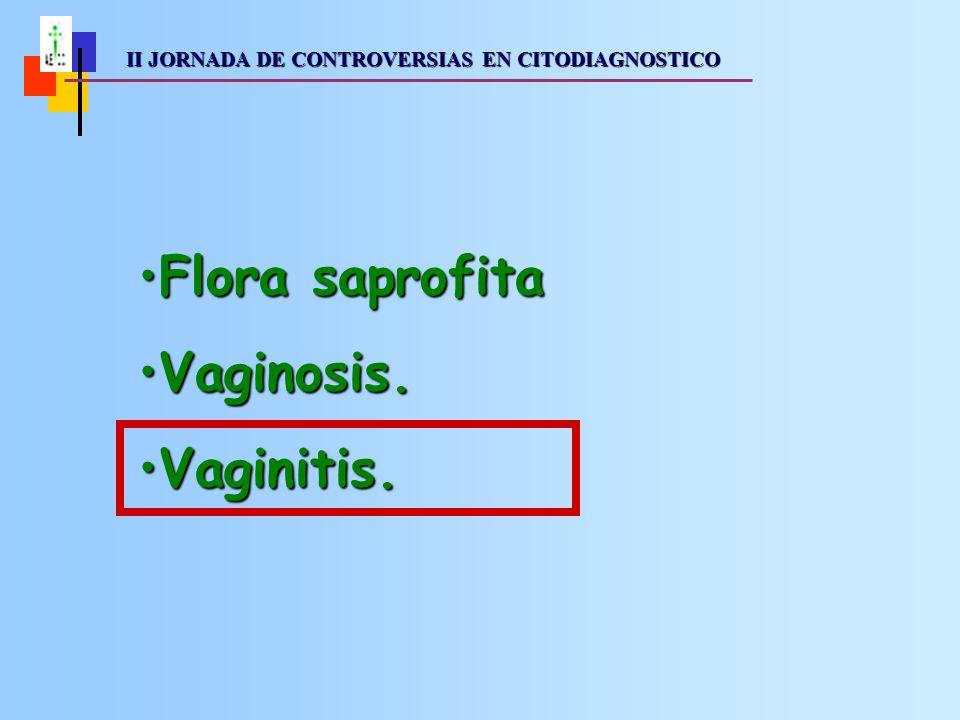 II JORNADA DE CONTROVERSIAS EN CITODIAGNOSTICO II JORNADA DE CONTROVERSIAS EN CITODIAGNOSTICO Vaginitis: Concepto clínico que indica inflamación de la vagina.