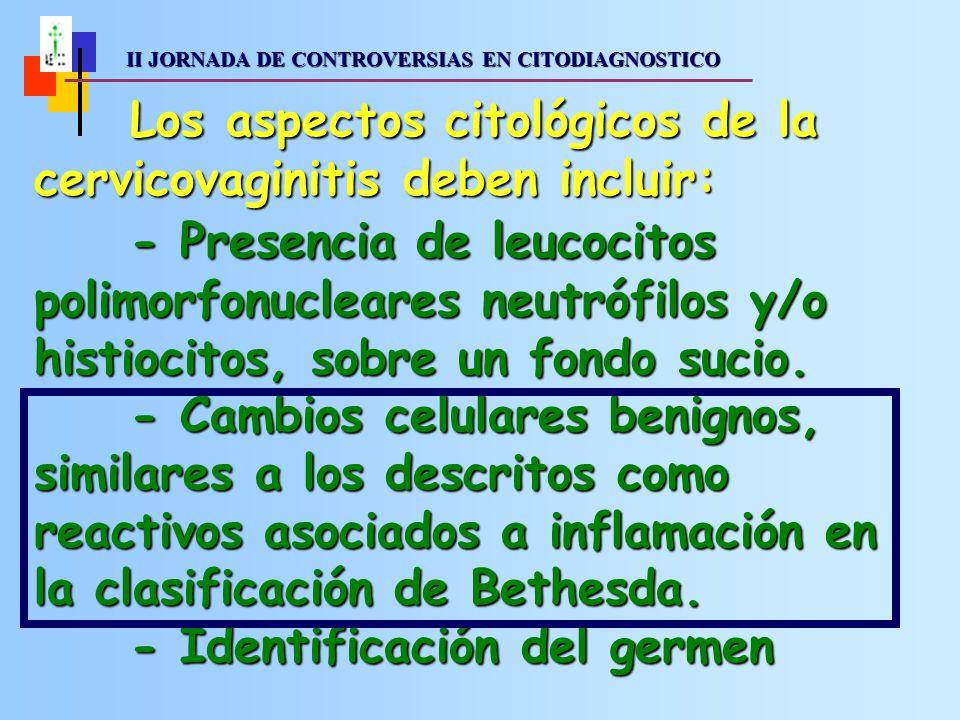 Los aspectos citológicos de la cervicovaginitis deben incluir: - Presencia de leucocitos polimorfonucleares neutrófilos y/o histiocitos, sobre un fondo sucio.