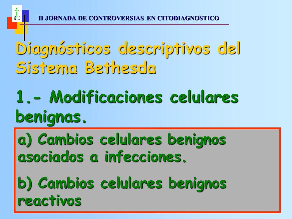 II JORNADA DE CONTROVERSIAS EN CITODIAGNOSTICO II JORNADA DE CONTROVERSIAS EN CITODIAGNOSTICO a) Cambios celulares benignos asociados a presencia de microorganismos.