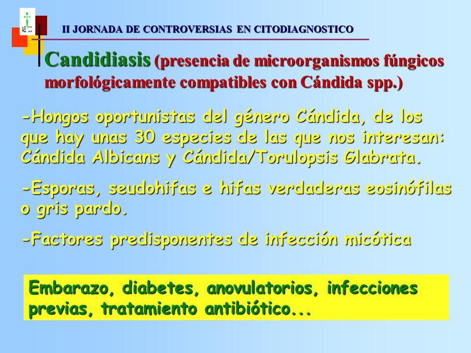II JORNADA DE CONTROVERSIAS EN CITODIAGNOSTICO II JORNADA DE CONTROVERSIAS EN CITODIAGNOSTICO Candidiasis (presencia de microorganismos fúngicos morfológicamente compatibles con Cándida spp.) -Hongos oportunistas del género Cándida, de los que hay unas 30 especies de las que nos interesan: Cándida Albicans y Cándida/Torulopsis Glabrata.