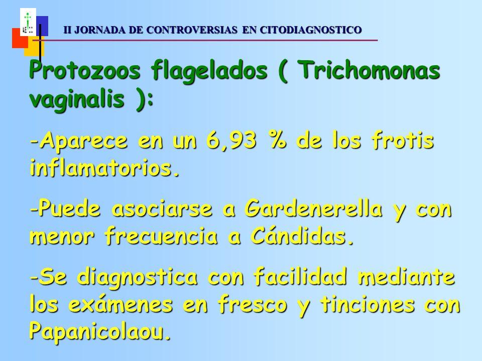 II JORNADA DE CONTROVERSIAS EN CITODIAGNOSTICO II JORNADA DE CONTROVERSIAS EN CITODIAGNOSTICO Protozoos flagelados ( Trichomonas vaginalis ): -Aparece en un 6,93 % de los frotis inflamatorios.