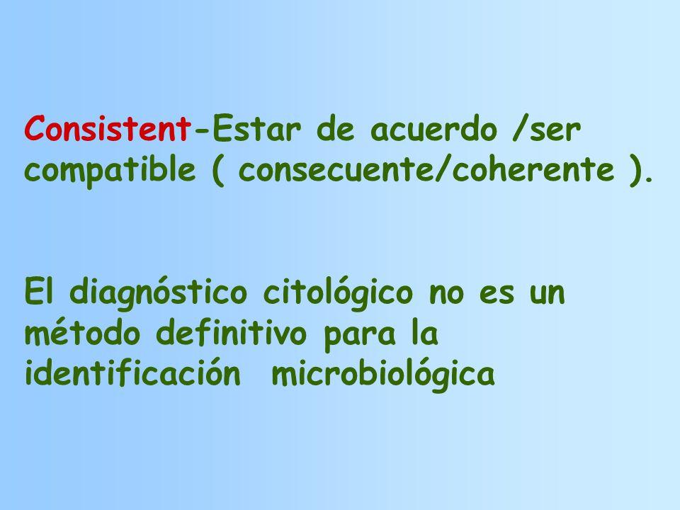 Consistent-Estar de acuerdo /ser compatible ( consecuente/coherente ).