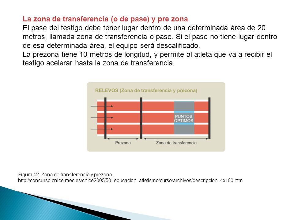 La zona de transferencia (o de pase) y pre zona El pase del testigo debe tener lugar dentro de una determinada área de 20 metros, llamada zona de transferencia o pase.