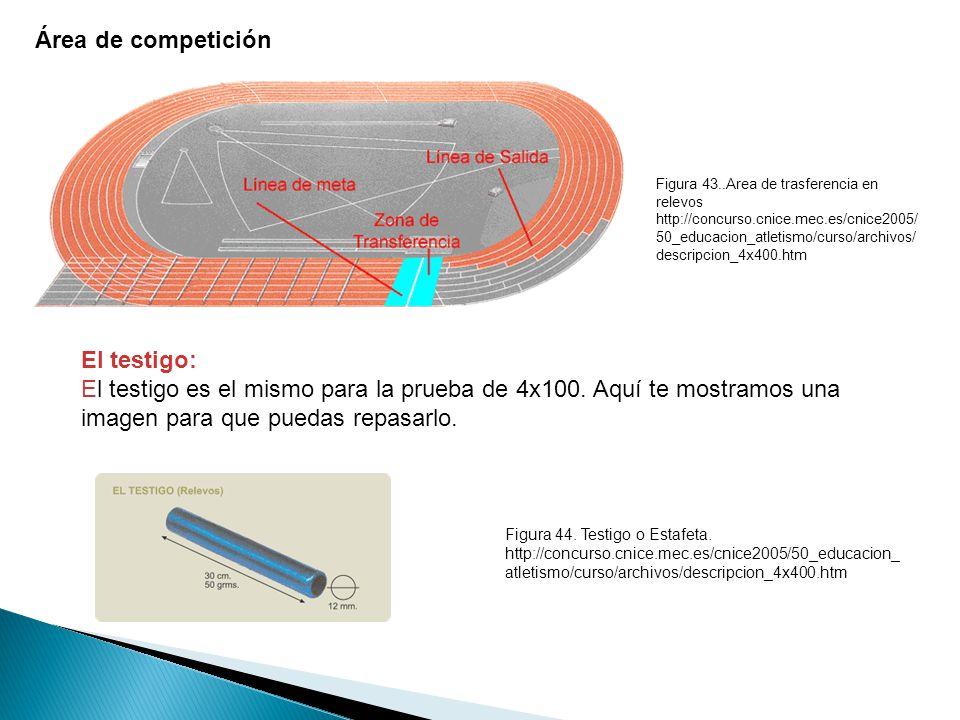 Área de competición El testigo: El testigo es el mismo para la prueba de 4x100.