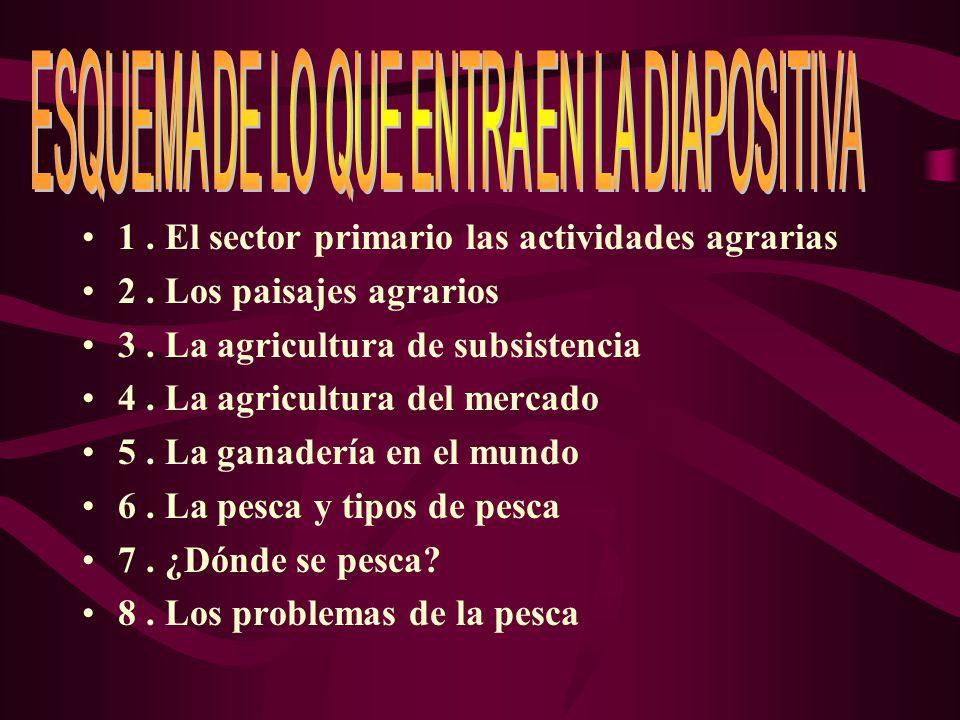 1.El sector primario las actividades agrarias 2. Los paisajes agrarios 3.