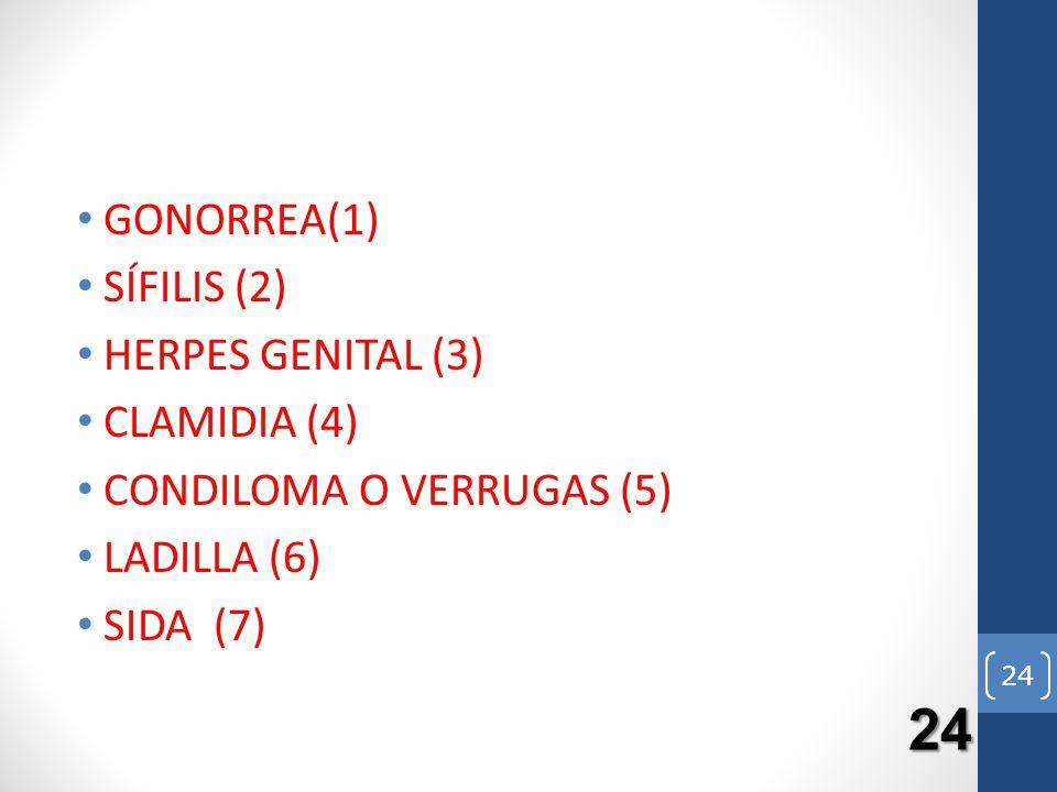 24 GONORREA(1) SÍFILIS (2) HERPES GENITAL (3) CLAMIDIA (4) CONDILOMA O VERRUGAS (5) LADILLA (6) SIDA (7) 24 24