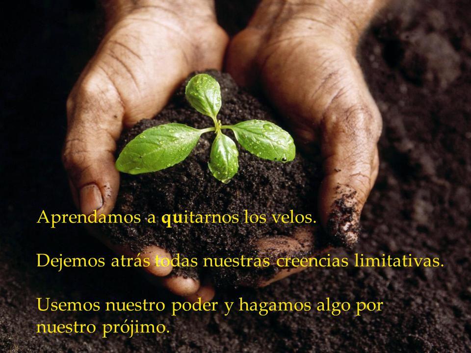www.vitanoblepowerpoints.net Estamos hechos de la misma sustancia de Dios. Somos información y energía. Somos creadores.