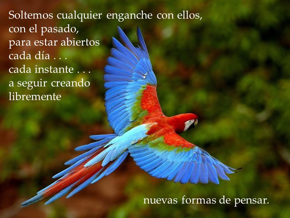 www.vitanoblepowerpoints.net Dejemos que nuestras memorias cambien también... Dejemos a nuestros recuerdos ser lo que son: sólo un peldaño en el proce