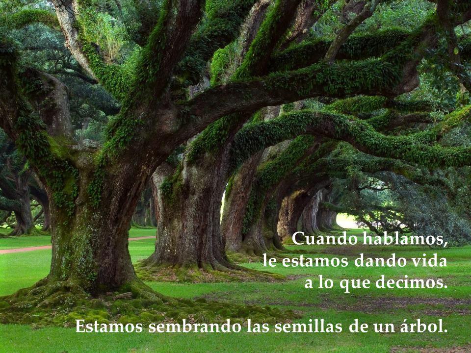 www.vitanoblepowerpoints.net Cuando sembramos una semilla, lo que esperamos de ella es que crezca. Igual sucede con lo que decimos. Nuestras palabras