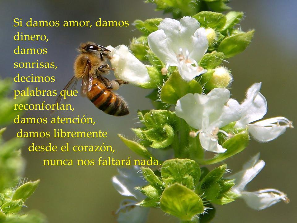 www.vitanoblepowerpoints.net Cuando damos libremente sin miedo, sin esperar nada a cambio, podemos tener fe que recibiremos lo mismo o mucho más. No f