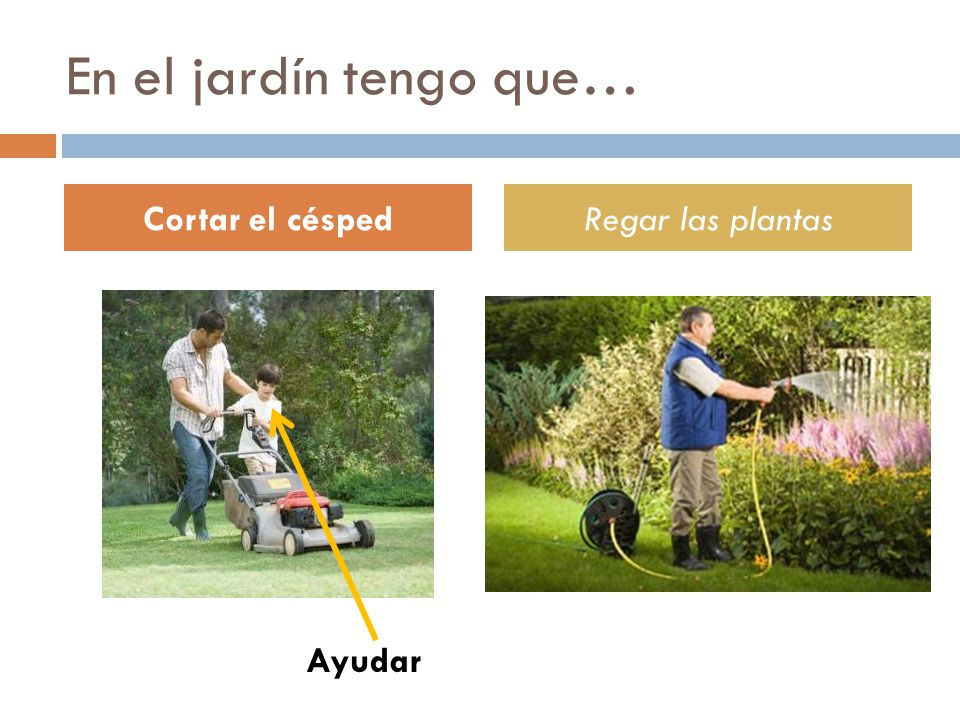 En el jardín tengo que… Cortar el céspedRegar las plantas Ayudar