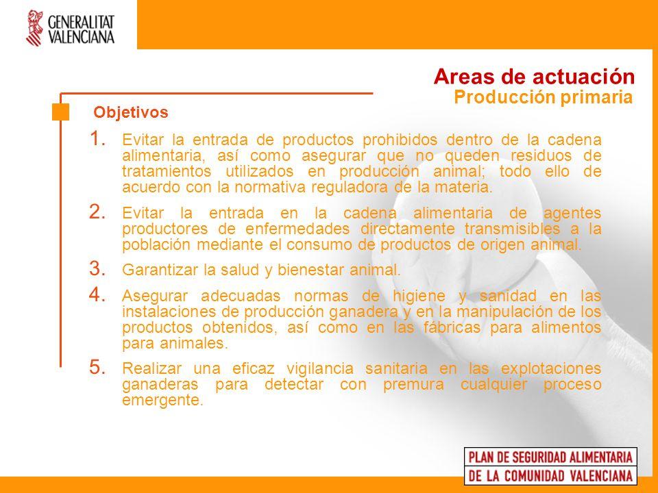 Areas de actuación 6.