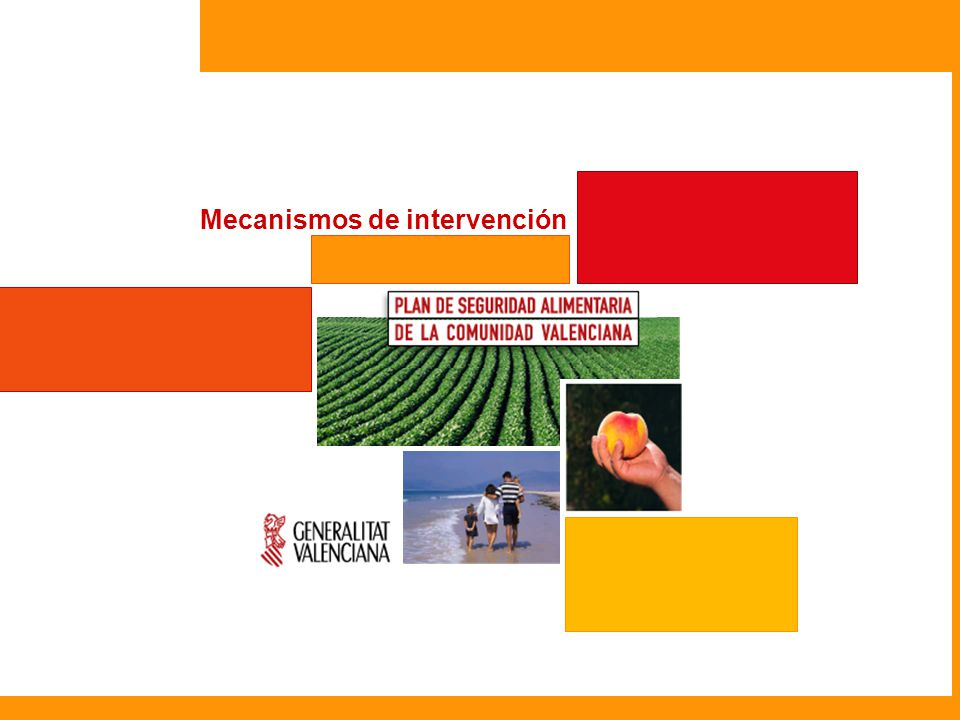 El Plan de Seguridad Alimentaria se apoya en cinco principios básicos que actúan como mecanismos de intervención, en muchos casos de manera simultánea, sobre las diferentes Áreas de Actuación Mecanismos de Intervención 1 2 3 4 5