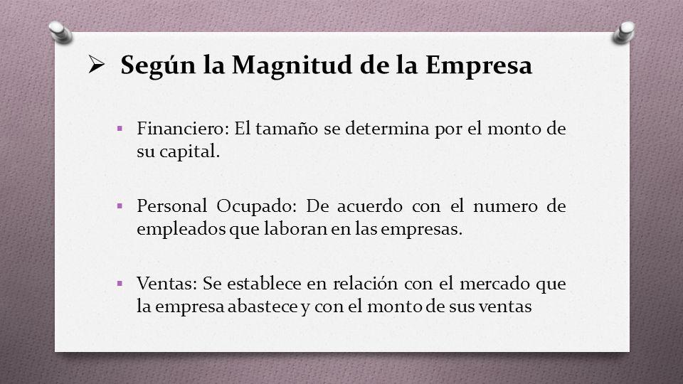  Según la Magnitud de la Empresa  Financiero: El tamaño se determina por el monto de su capital.