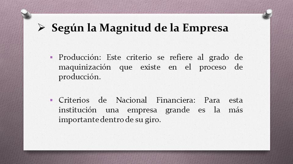 Según la Magnitud de la Empresa  Producción: Este criterio se refiere al grado de maquinización que existe en el proceso de producción.