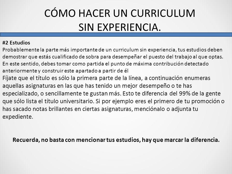 Como Hacer Un Curriculum Vitae Como Hacer Un Curriculum Sin