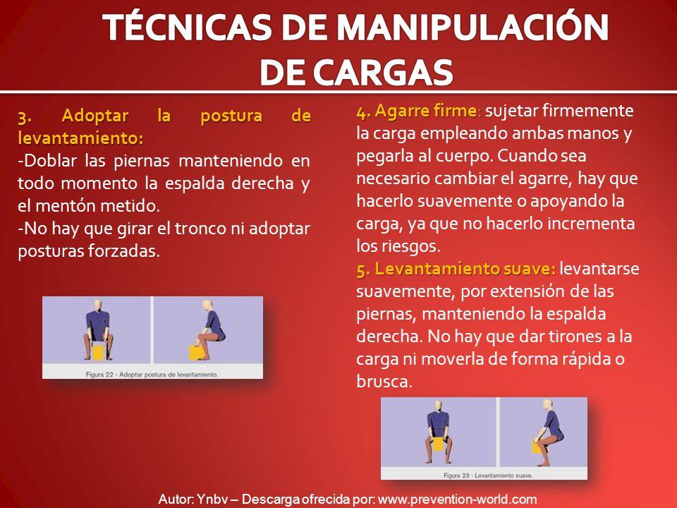 Autor: Ynbv – Descarga ofrecida por: www.prevention-world.com 3. Adoptar la postura de levantamiento: -Doblar las piernas manteniendo en todo momento